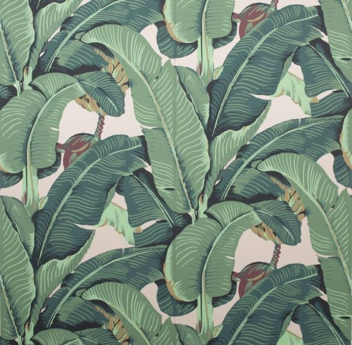 Iconic Beverly Hills Palm Wallpaper