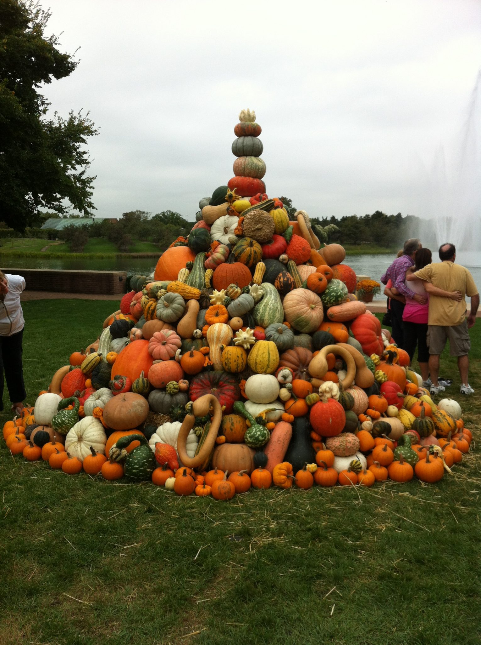 Pumpkins at the Botanic Garden